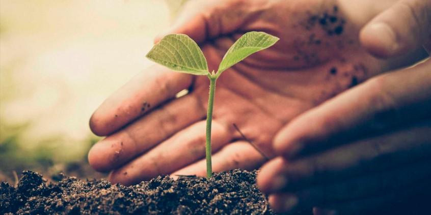 Desenvolvimento-sustentável-em-postos-de-combustíveis